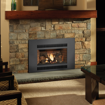 Fireplace inserts sackett fireplace for Gas fireplace maintenance do it yourself